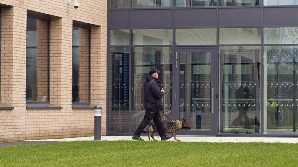Guard and dog on patrol